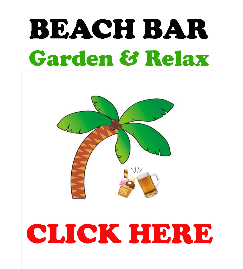 Logo beach bar per sito eng OK
